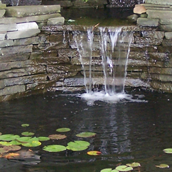 pond_250x250_2
